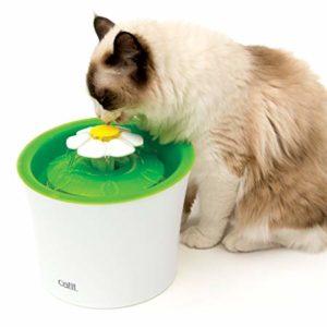 best cat water fountain Catit Flower